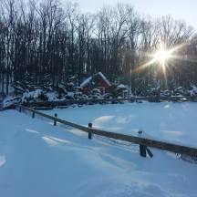 blizzard-snow
