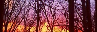 cropped-sunset-again.jpg