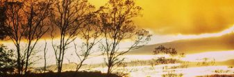 cropped-sunset-farm.jpg