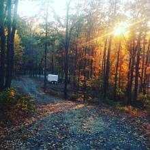 fall-at-the-farm