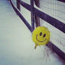 smile-its-winter