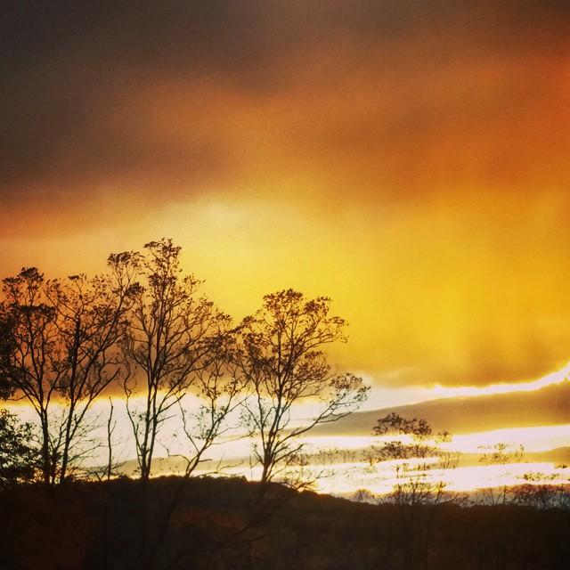 sunset-farm