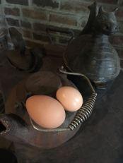 super-sized-egg